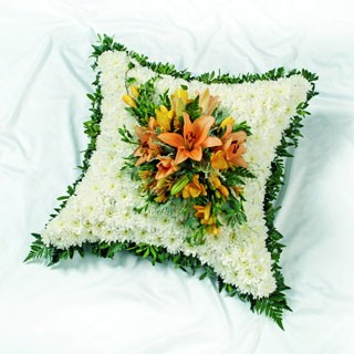 Cushion Based