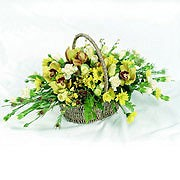 Traditional Orchid Basket