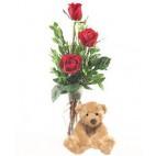 Teddy & 3 Roses In A Vase