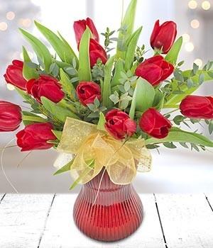 Tulip Tidings