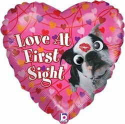 Love At First Sight - Valentines Day Balloon - Google Eyes!